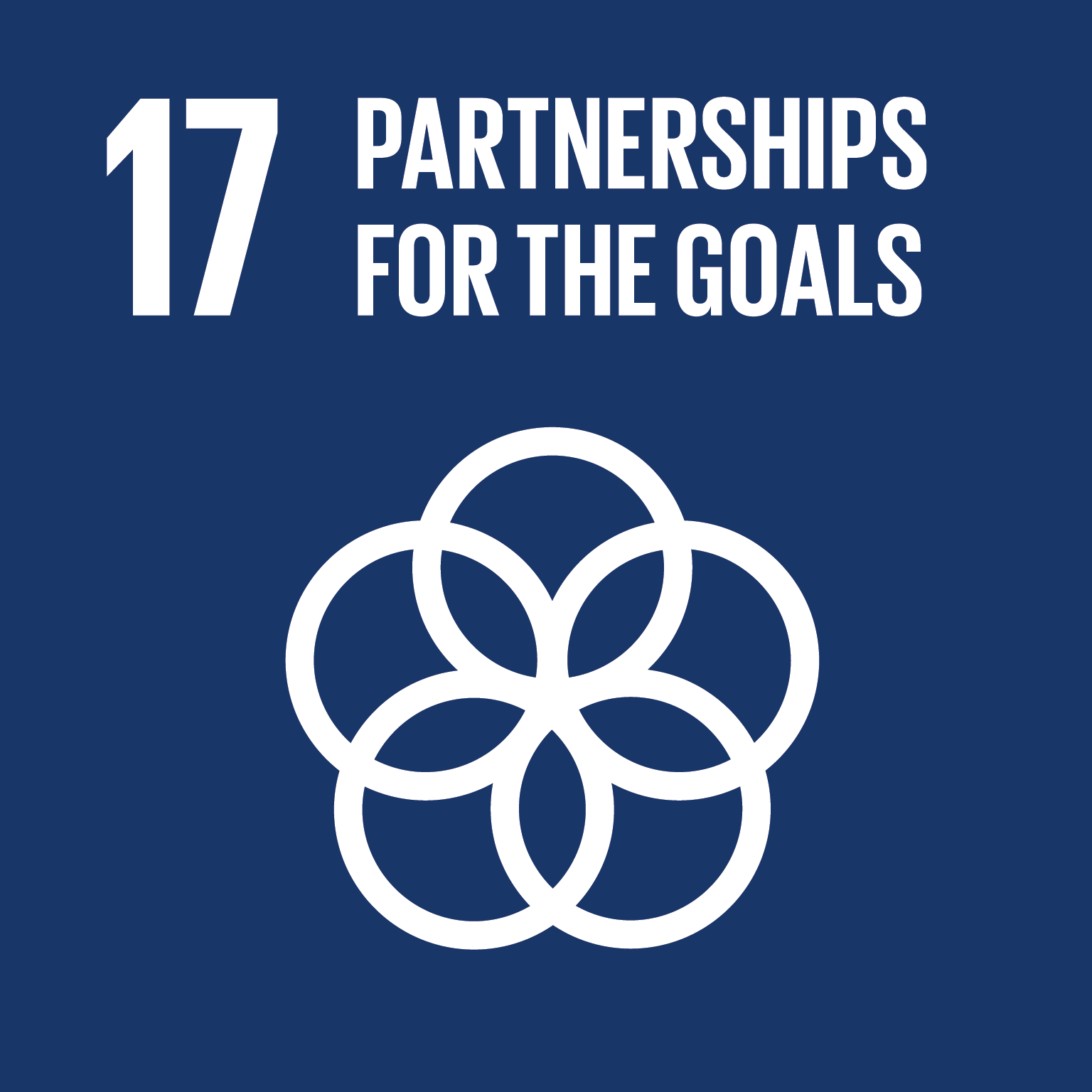 SDG 17, Partnerships for the goals, sustainable
